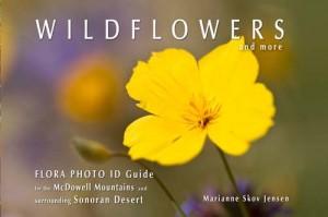 Flora Guide