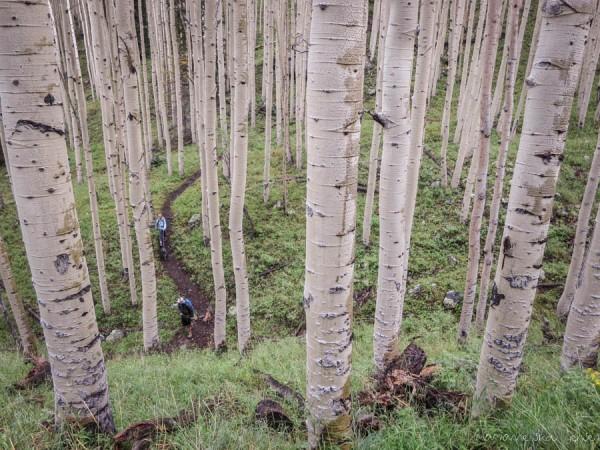 Hiking the Inner Basin Trail in the Rain