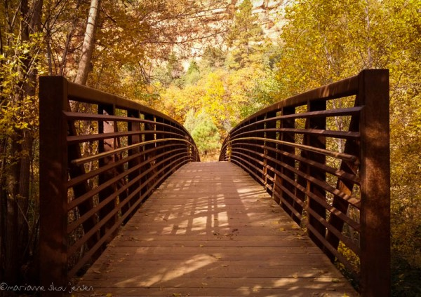 "Capturing a ""people free"" bridge is very difficult in fall! Get there early. (smartphone)"