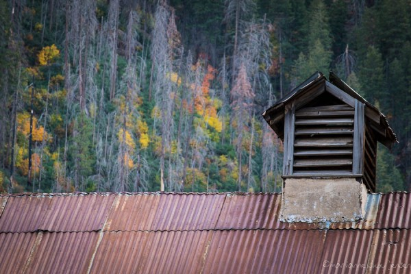 Roof of the old Apple Processing Barn at Slide Rock State Park. Note the colorful Maple trees on the hillside. (Fuji X E-1)