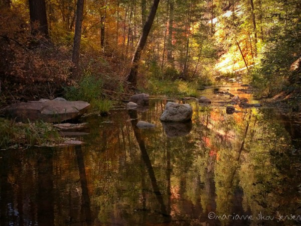 Oak Creek Canyon Reflections. (Fuji X E-1)