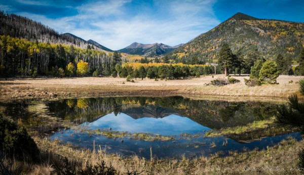 A calm morning at the Lockett Meadow Tank. (panorama shot with Fuji X E-1