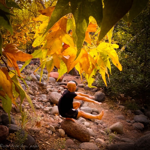 Creek-side Yoga under the Sycamores. (smartphone)