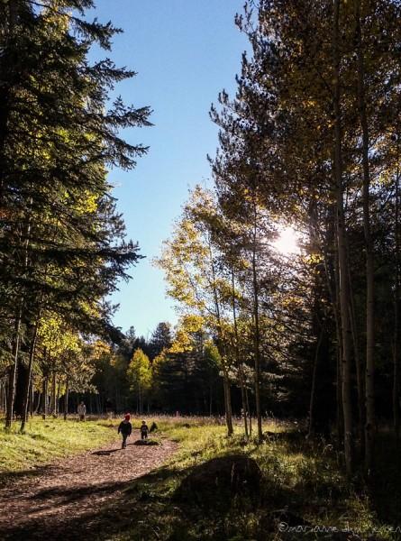 A family enjoying a late day hike at Aspen Corner. (Galaxy Smartphone)