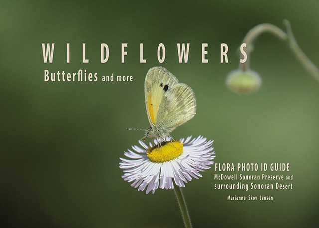 Flora Guide Cover